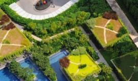 Elmich Green Roof Project - Soleil@sinaran3