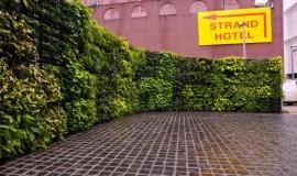 Elmich VGM green wall - Hotel Rendezvous02