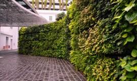 Elmich VGM green wall - Hotel Rendezvous03