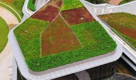 Green roof - elmich - nus utown02