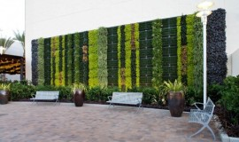 News - Elmich Green Wall - San Diego01