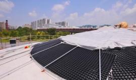 extensive green roof - elmich - mac01