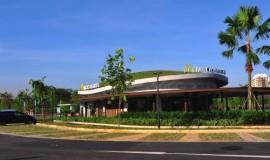 extensive green roof - elmich - mac04.jpg