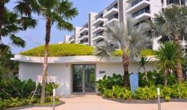 green roof - elmich - seascape01