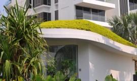 green roof - elmich - seascape02