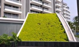 green roof - elmich - seascape03