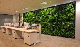 green wall - elmich - mbfc03