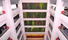 green wall - elmich - nuh02