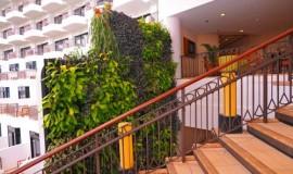 green wall - elmich - rasa02