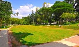 turf stabilisation - elmich - bishan park01