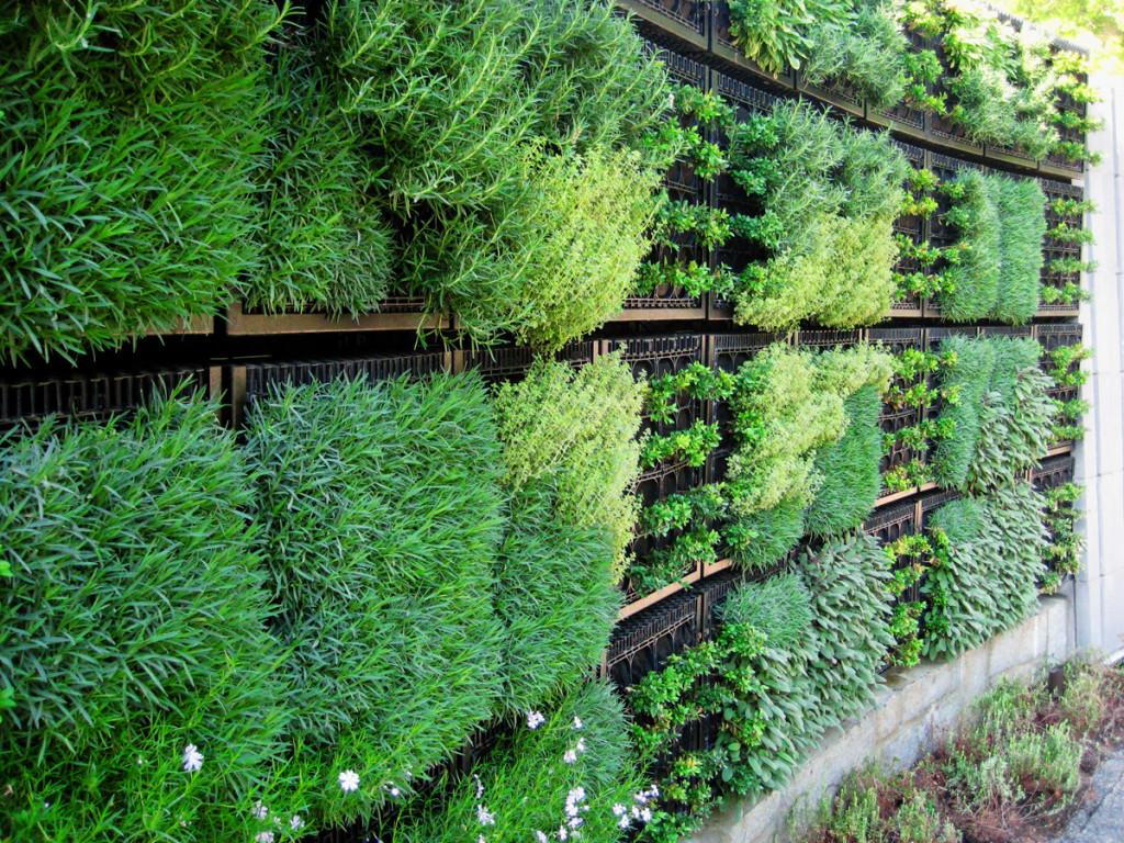 Atlanta Botanical Gardens2 - VGM - elmich