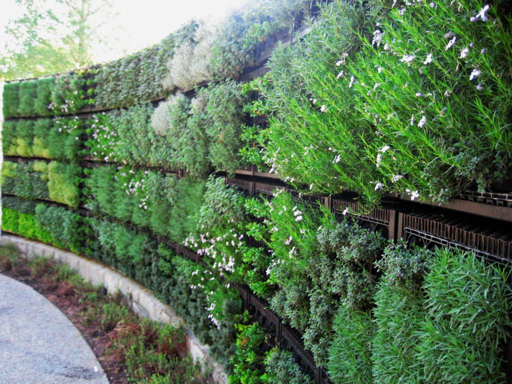 Edible Vertical Gardens with Elmich Green Walls | Elmich ...
