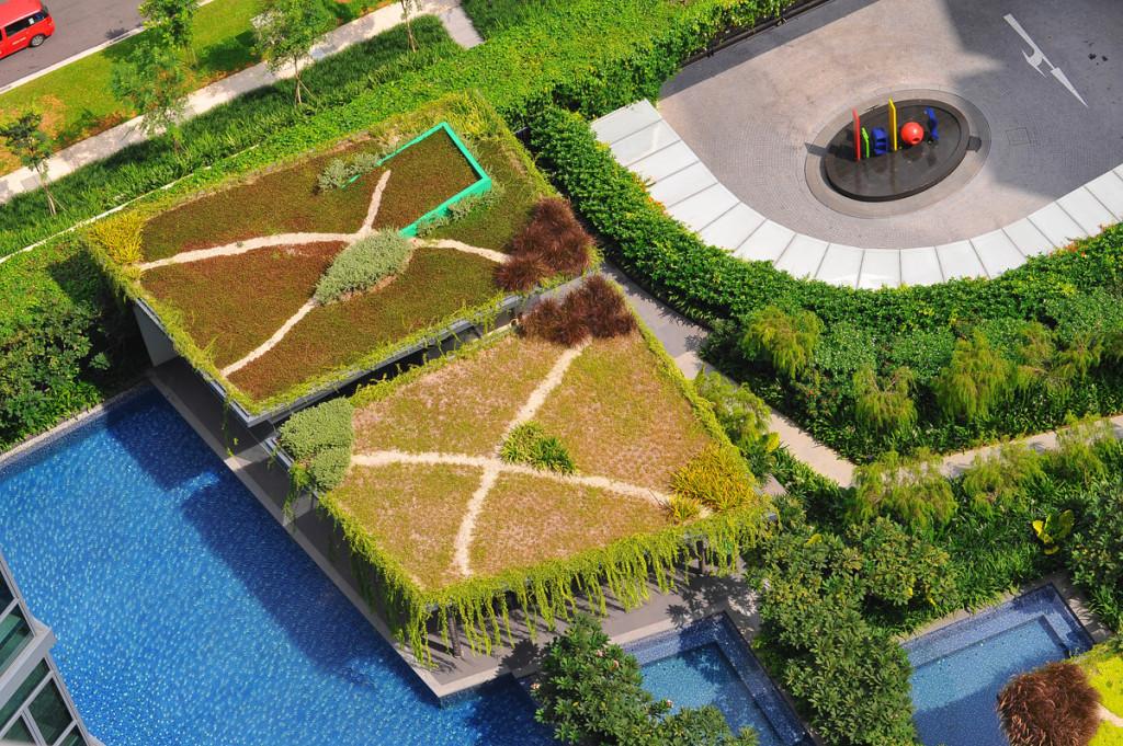Elmich Green Roof Project - Soleil@sinaran2
