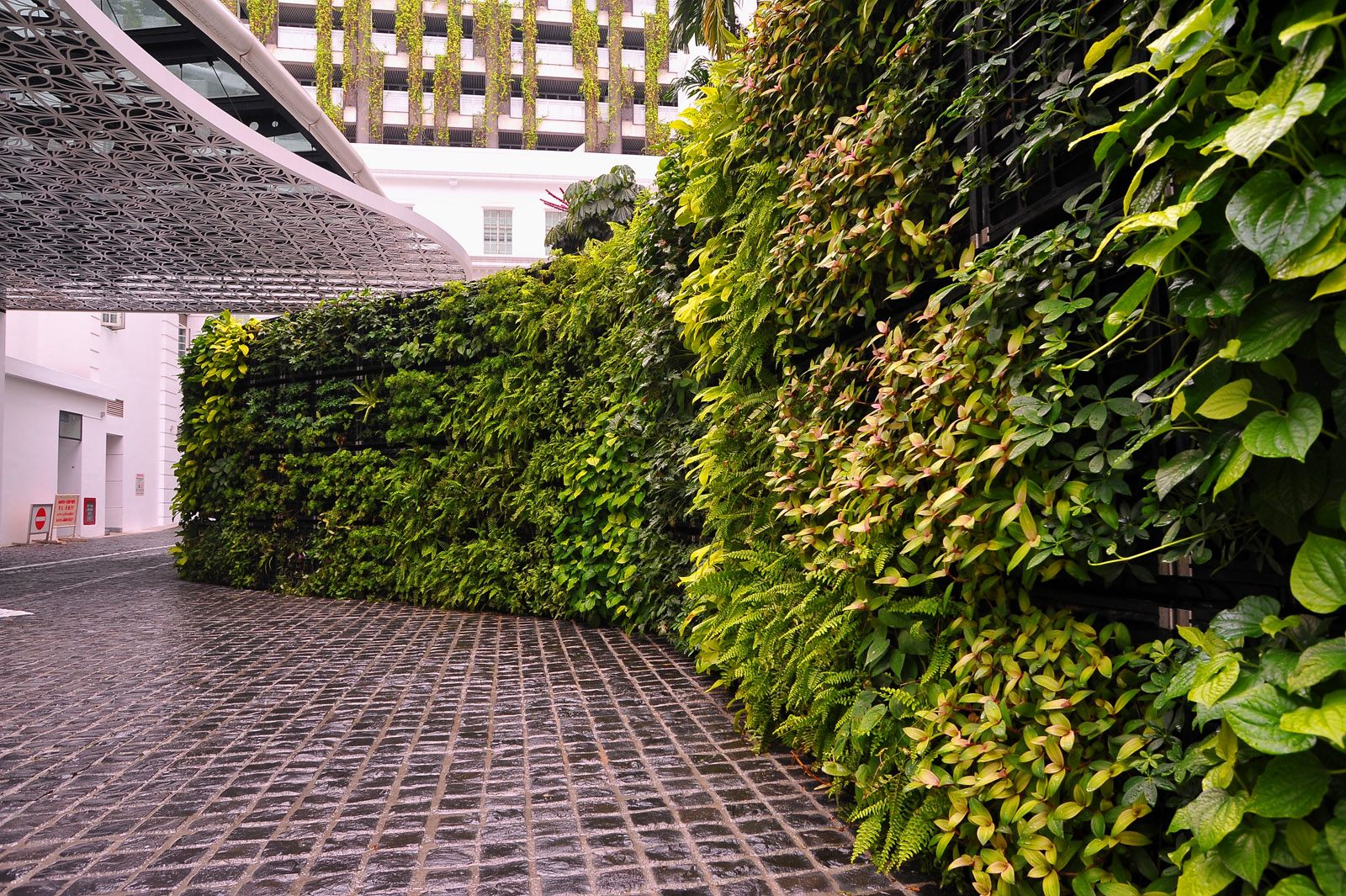 Elmich Vgm Green Wall Rendezvous Hotel Singapore