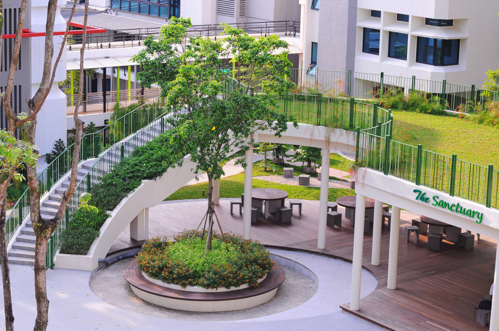 Extensive green roof - The Sanctuary02