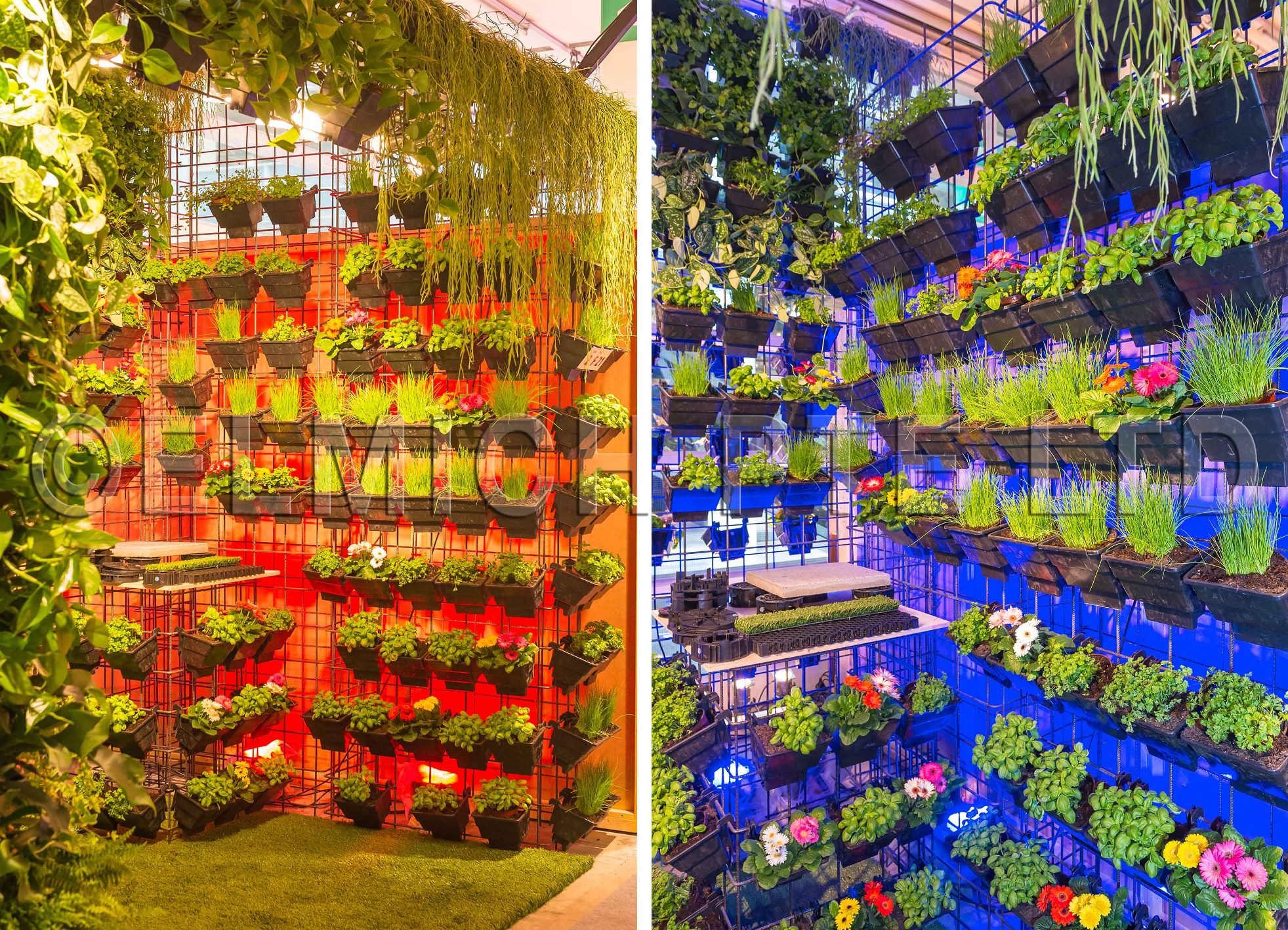 giardina 2015 is one of europes leading indoor events showcasing exciting current trends in garden design this 5 day exposition was held from 11 to 15