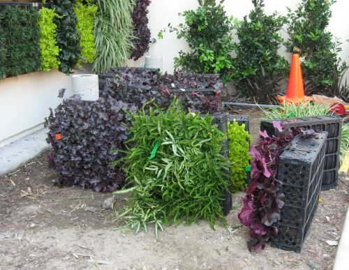 News - Elmich Green Wall - San Diego04