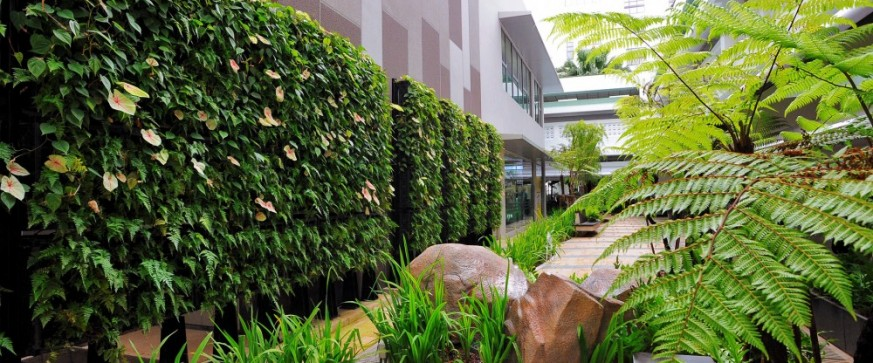 a living wall to green and heal elmich pte ltd. Black Bedroom Furniture Sets. Home Design Ideas