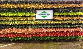 hytex2