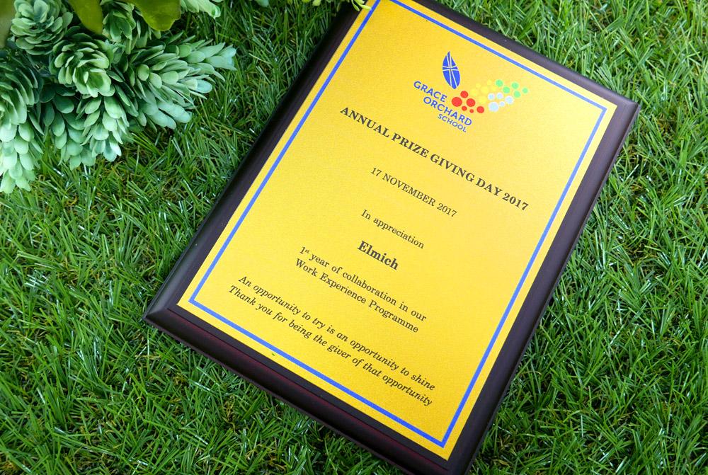 Appreciation plaque from GOS