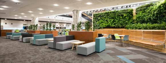 VGT Green Wall system @ level one of the Datacom office, NZ