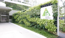 A living green wall welcomes the students into a warm and conducive learning environment.