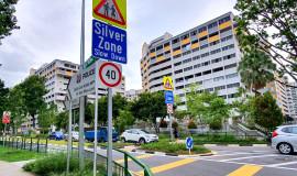 silverzonefeat