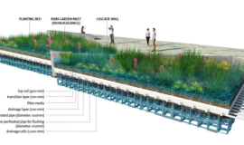 Raingarden concept. Image by Grant Associates.