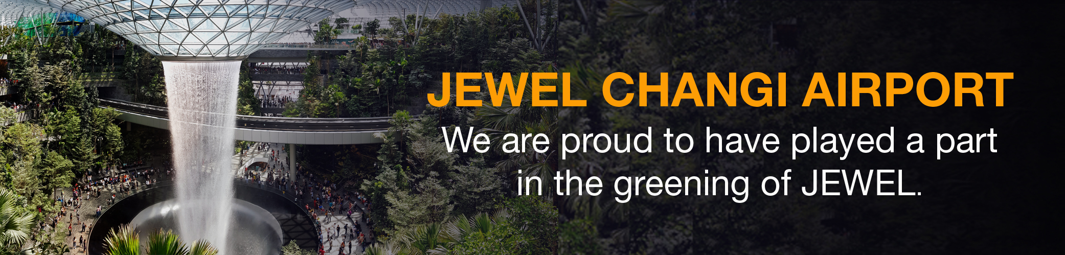 jewel web-banner