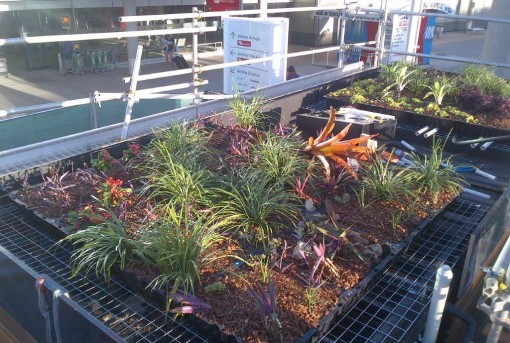 Mep Tray Intensive And Extensive Green Roof Module