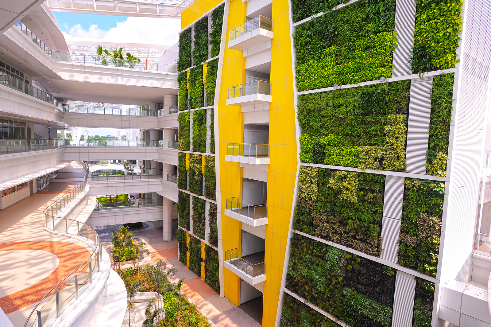World s largest vertical greenery project singapore ite - Building a living wall ...
